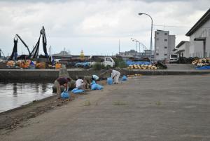 漁港周辺清掃