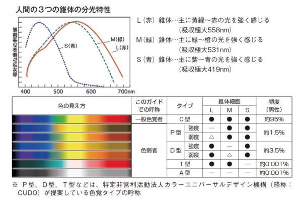 人間の3つの錐体の分光特性